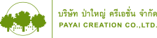 web-payai-logo