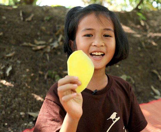 004 น้องมิลค์ชวนชิมมะม่วงพันธุ์ขายตึก
