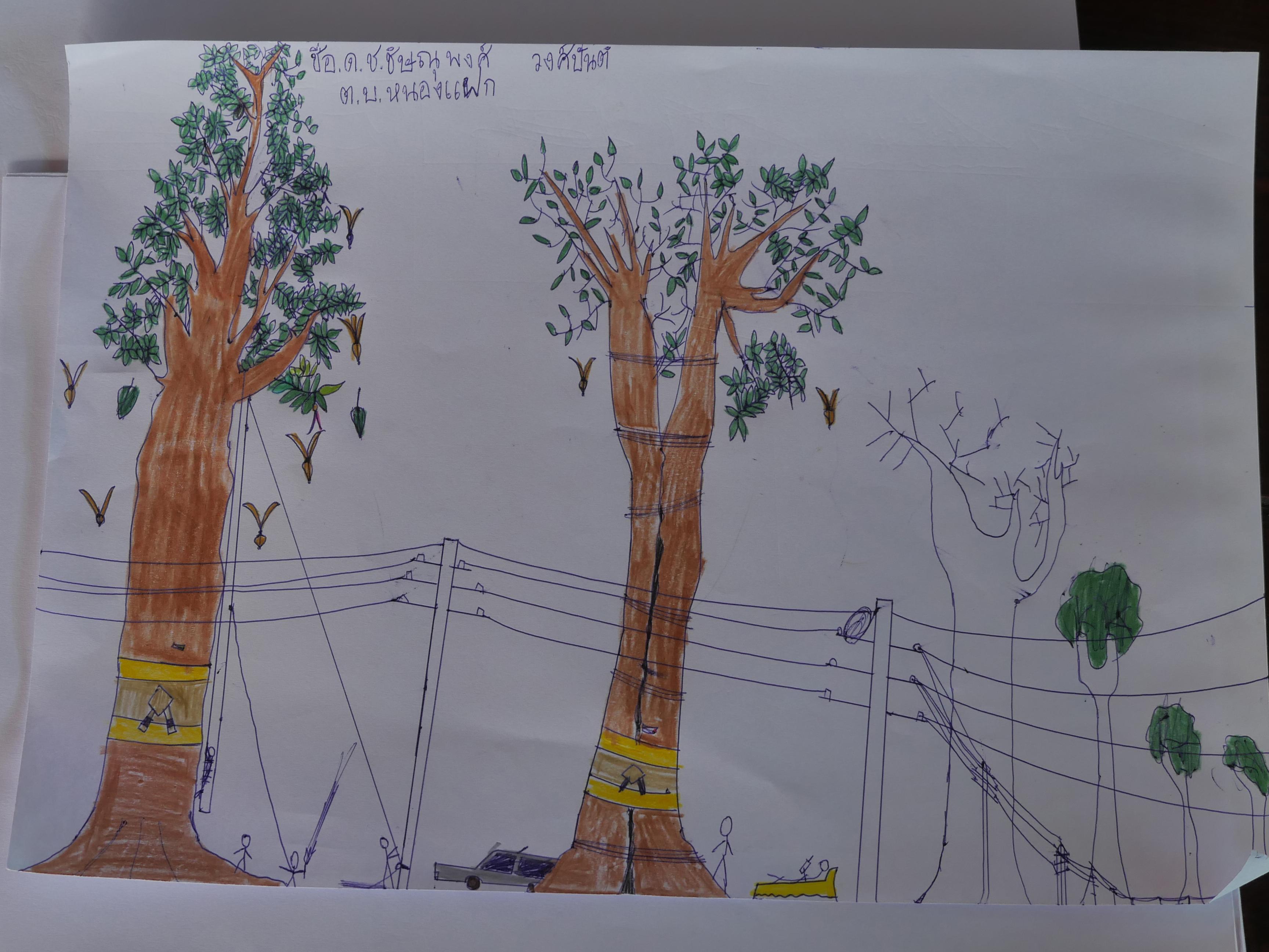 ภาพวาดฝีมือณาวา อายุ 6 ขวบ