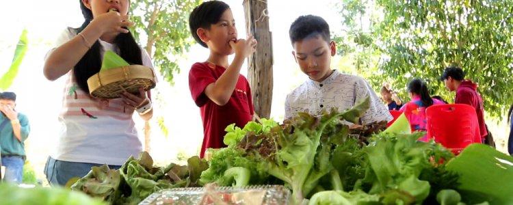 บทเรียนวิชาพืชผัก…ในไร่ลุงรัง