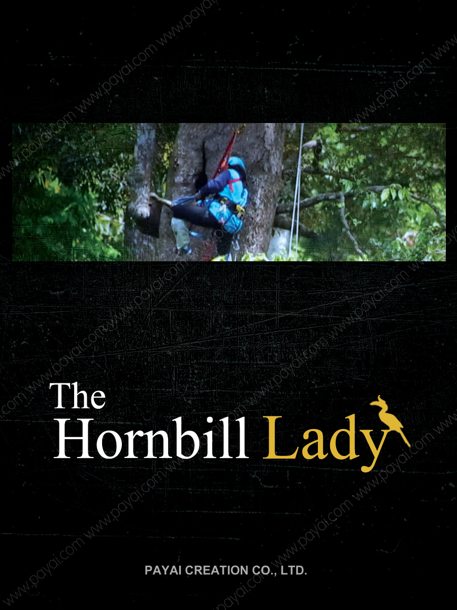 The Hornbill Lady 4X3+water